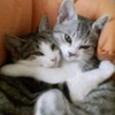 抱き合う。